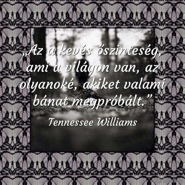 tennessee williams idézetek Idézet.hu   Az a kevés őszinteség, ami a világon van, az olyan